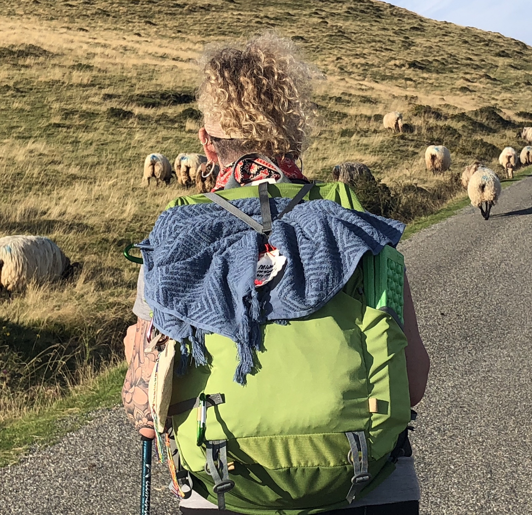 Pyrenees backpack