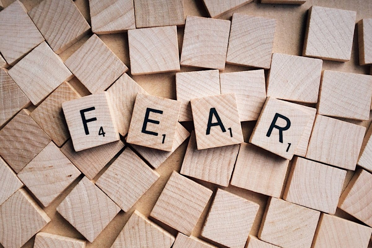 Getting to know, and question, your fears – Part 1